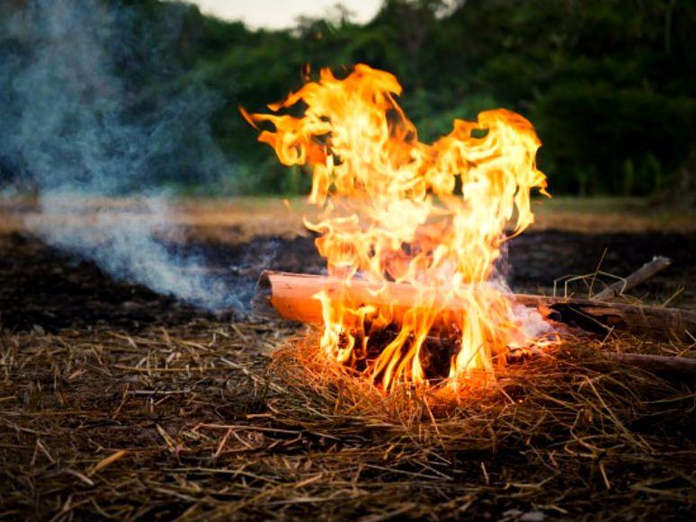 fogo com bambo